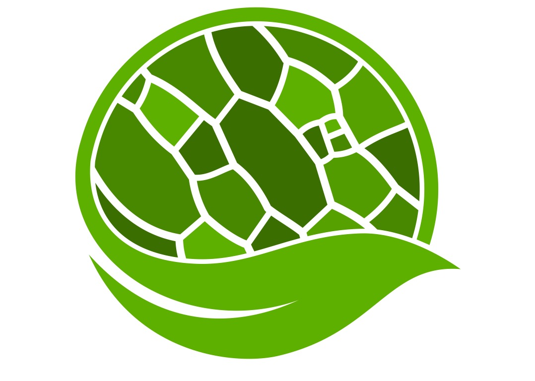Plant Cell Atlas logo