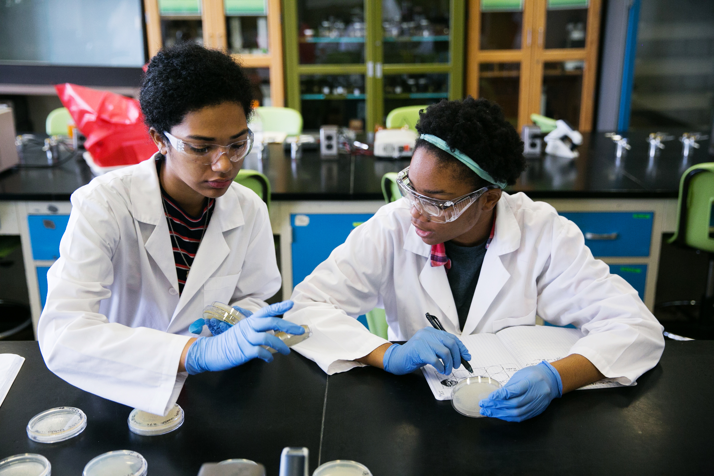 Carnegie Academy for Science Education students conduct hands-on research.