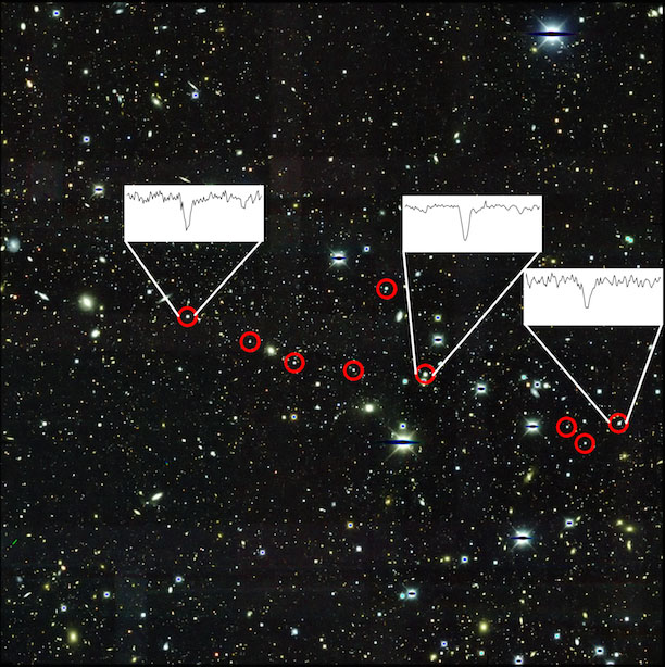(Top Image Caption: This is an image of Reticulum II obtained by the Dark Energy Survey, using the Blanco 4-meter telescope at Cerro Tololo Inter-American Observatory. The nine stars described in the paper are circled in red. The insets show the very strong presence of barium, one of the main neutron capture elements the team observed, in three stars. Background image is courtesy of Dark Energy Survey/Fermilab. Foreground image is courtesy of Alexander Ji, Anna Frebel, Anirudh Chiti, and Josh Simon. A larger version is available here.)