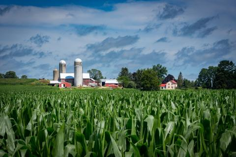 Midwestern farm purchased from Shutterstock