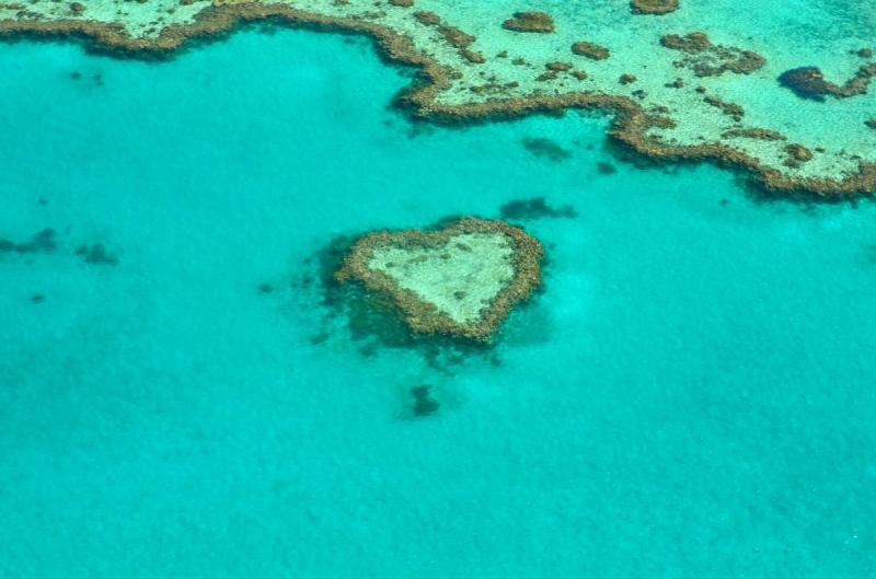 Heart Reef in Australia's Great Barrier Reef, public domain.